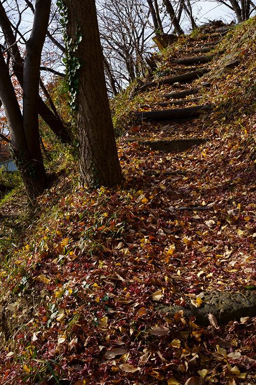 岩谷観音の磨崖仏から上へ登る山道