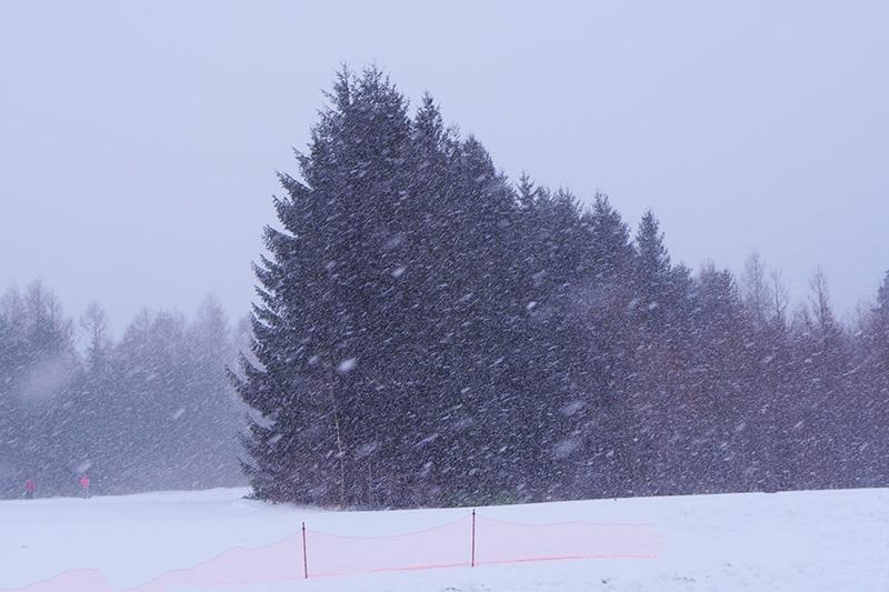 八幡平の雪