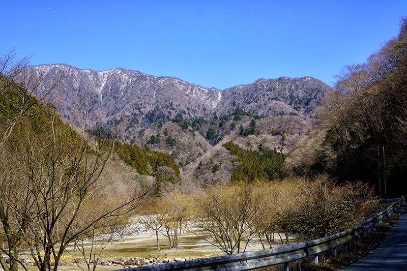 丹沢の稜線