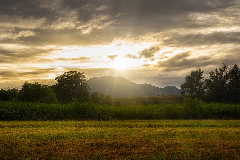 紫波町のりんご畑と東根山