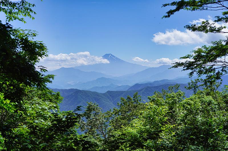 三頭山西峰から富士山