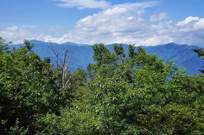 三頭山西峰から石尾根の山々