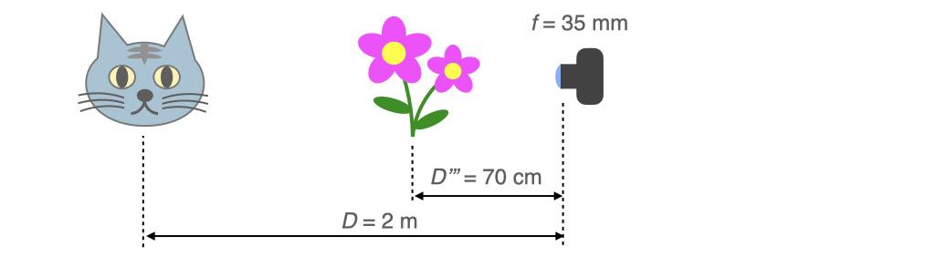 被写体までの距離が2 m,手前70 cmのところの花を前ボケさせる