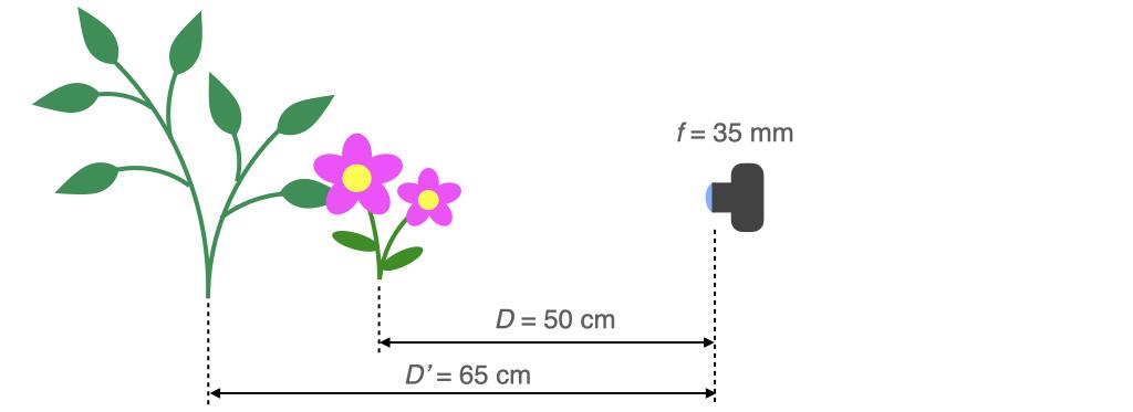 被写体まで50 cm, 背景まで65 cmの時