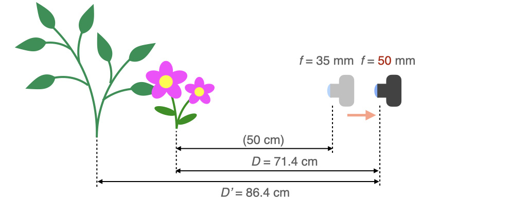50 mmレンズで,被写体の大きさが同じになるように71.4 cmまで離れた時