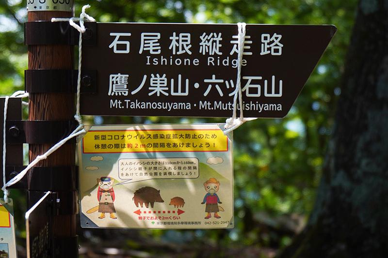 倉戸山の山頂標