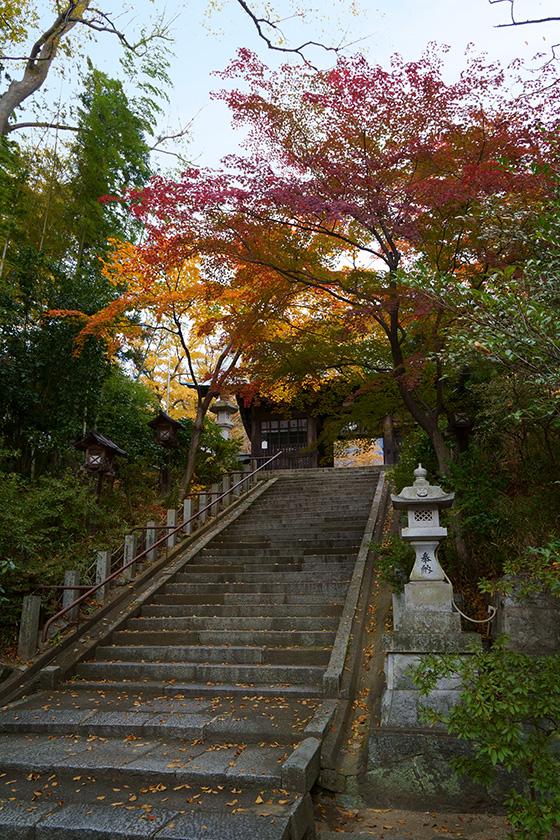 二本松神社の石段