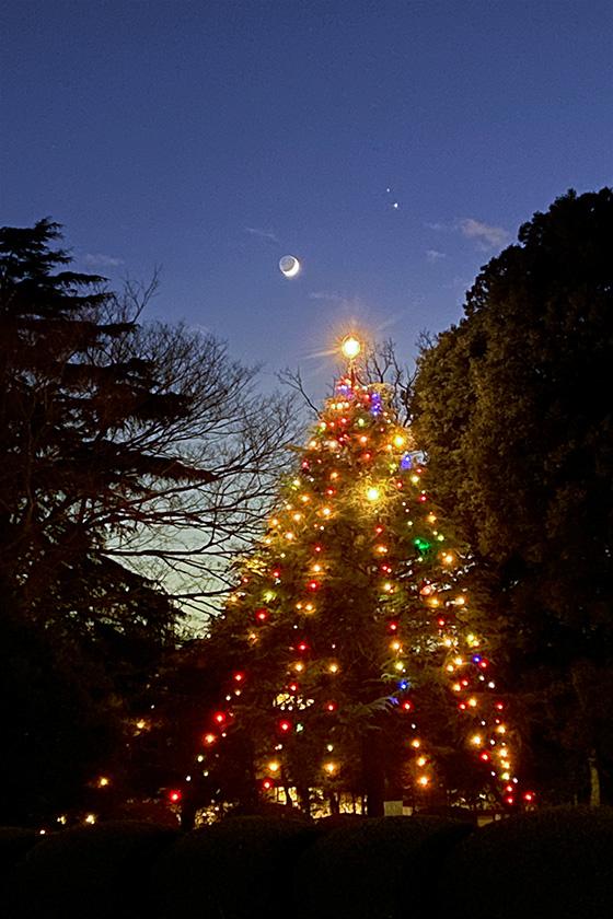 クリスマスツリーと三日月と木星,土星