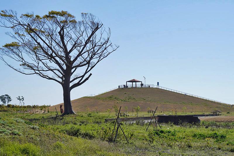 岩沼市・千年希望の丘