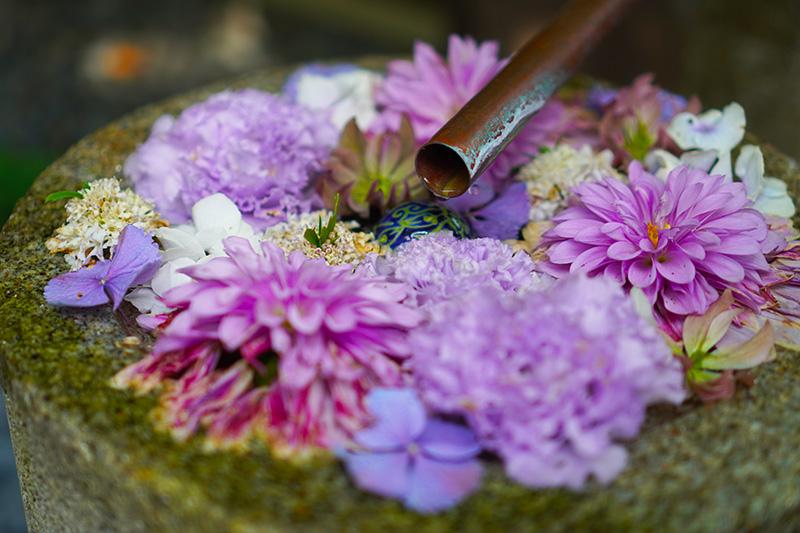 水が流れる花手水