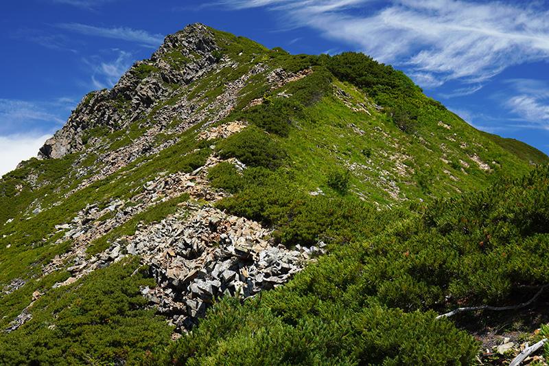 赤沢岳へ最後の登り