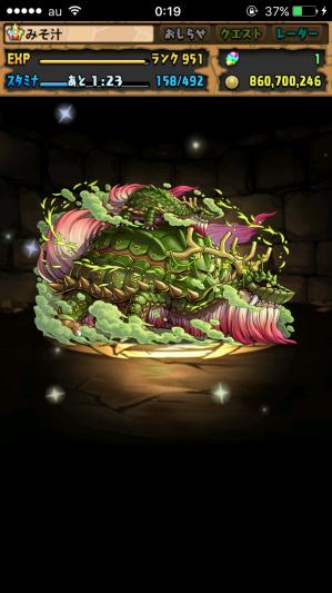 木の戦武龍 ドロップ