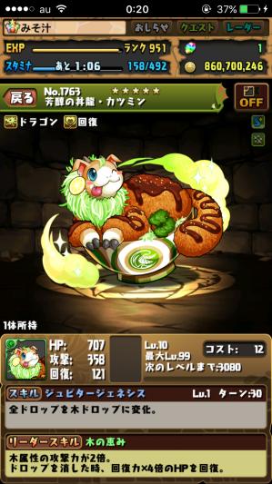 木の戦武龍 丼龍