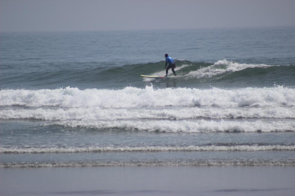f:id:surfingsurfing:20170412163537j:plain