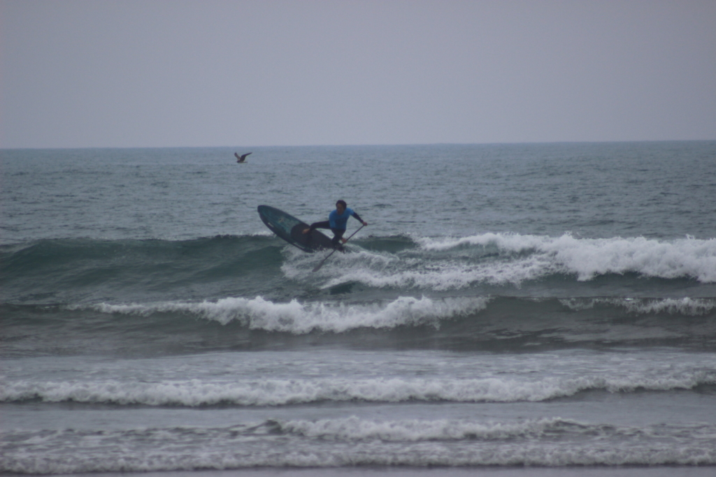 f:id:surfingsurfing:20170412165021j:plain