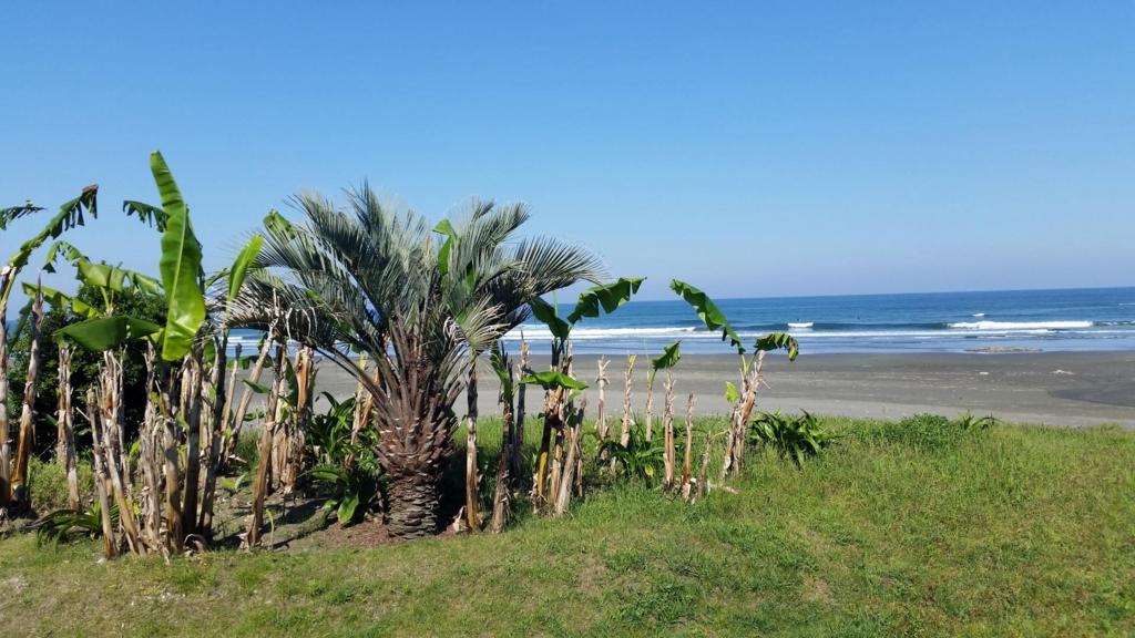 f:id:surfingsurfing:20170520175616j:plain