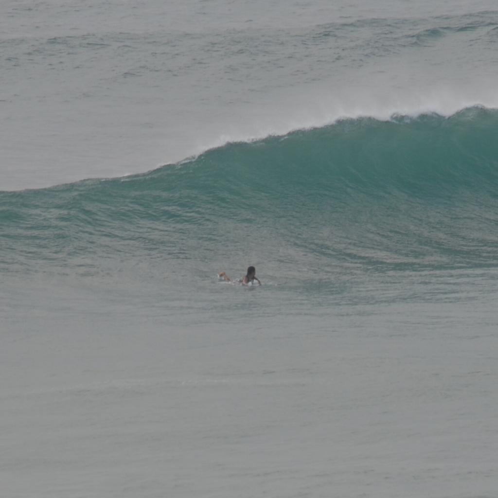 f:id:surfingsurfing:20170728204117j:plain