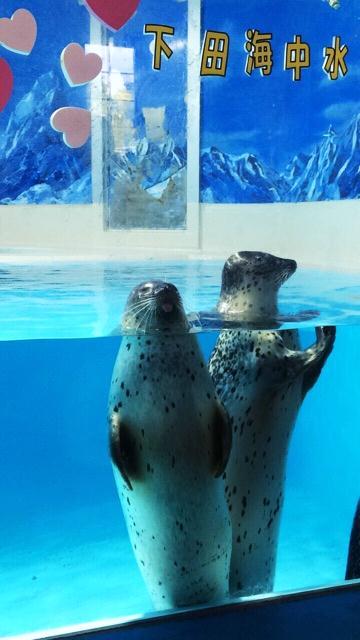 f:id:suruga-econ:20161009082701p:plain