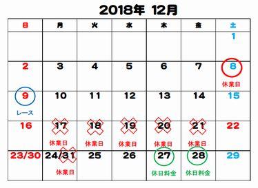 f:id:suruga_speedway:20181207230548j:plain