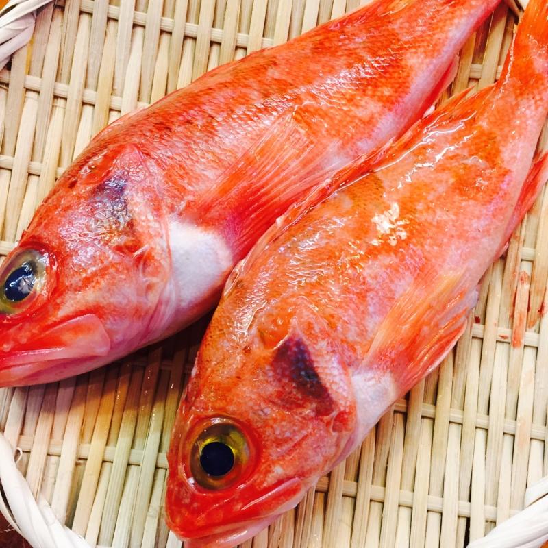 f:id:surugaji-today:20170219160047j:plain
