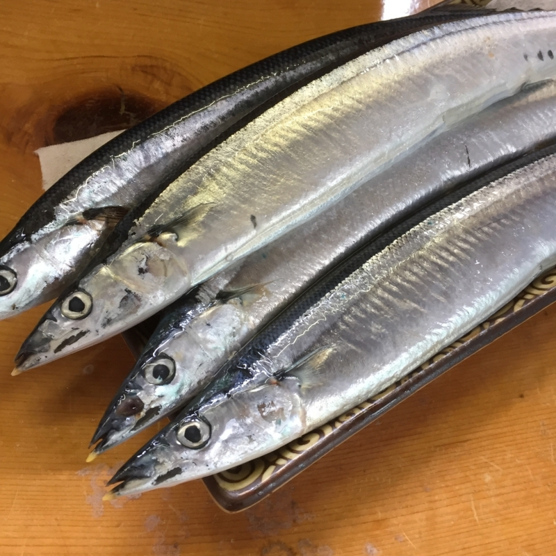 f:id:surugaji-today:20180817155335j:plain