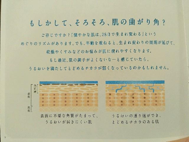 f:id:surusumi1211:20190216181110j:image