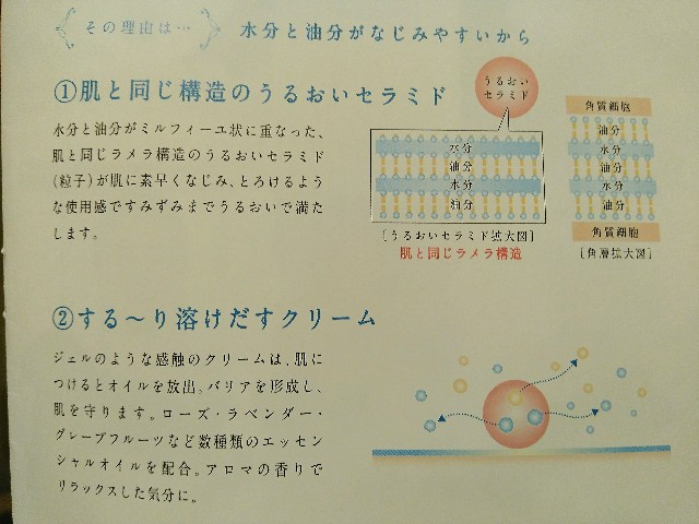 f:id:surusumi1211:20190216181140j:image