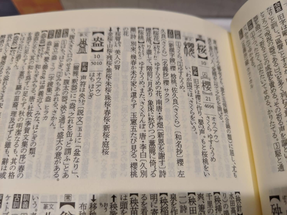 f:id:surusumi1211:20210216011737j:plain