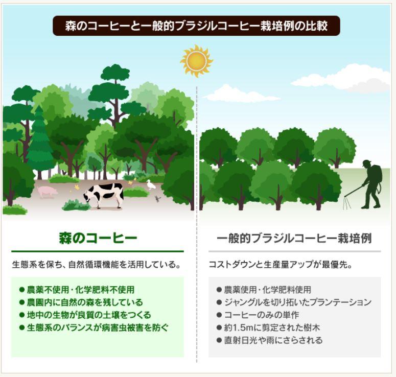 f:id:surusumi1211:20210424005800j:plain
