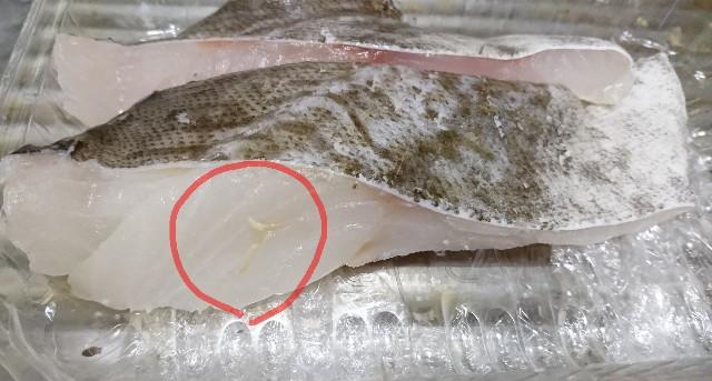 f:id:sushi1051027:20190121153231j:image