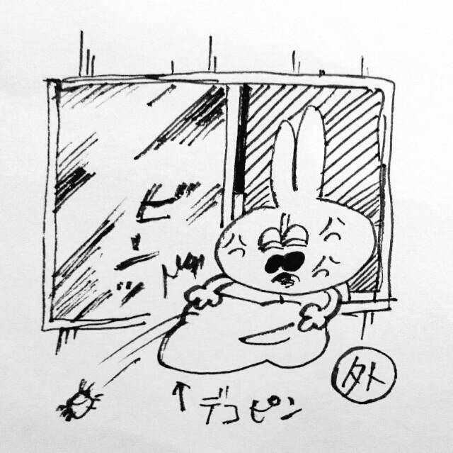 f:id:sushithunder:20171102180420j:image