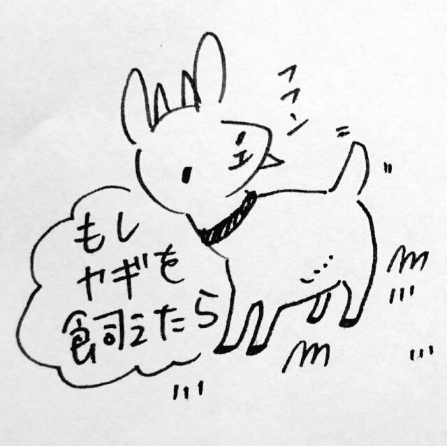 f:id:sushithunder:20171108170911j:image