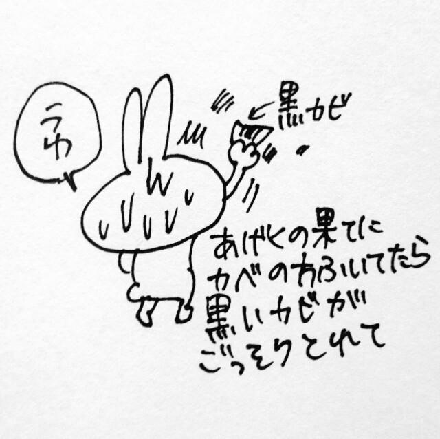 f:id:sushithunder:20171111183812j:image