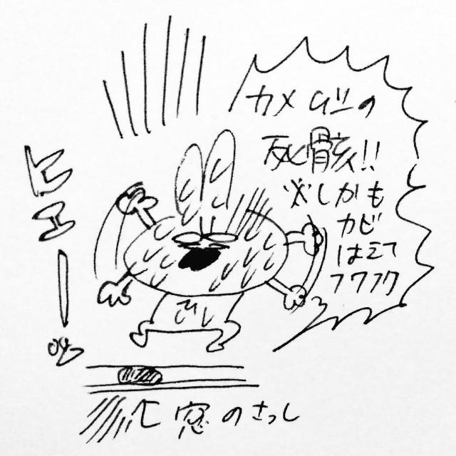 f:id:sushithunder:20180325185100j:image