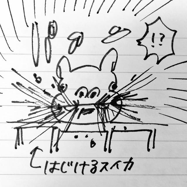 f:id:sushithunder:20180427190147j:image