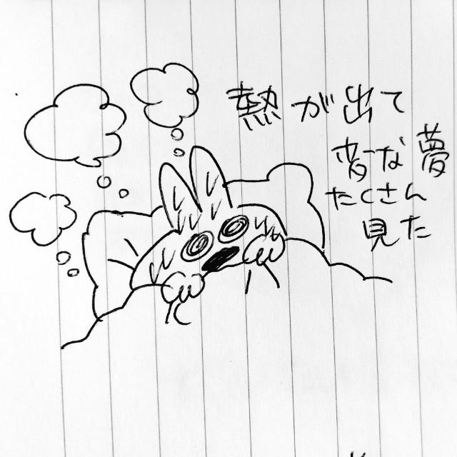f:id:sushithunder:20180502190528j:image