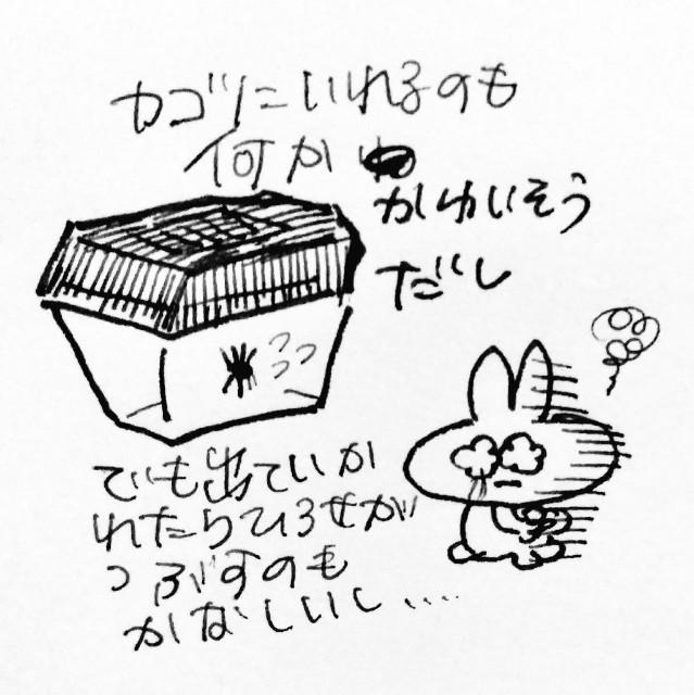 f:id:sushithunder:20180520191744j:image