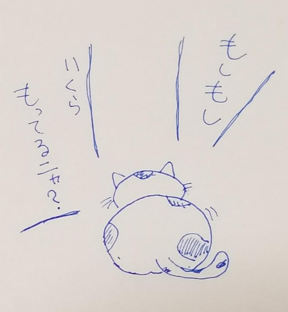 f:id:susi202:20190123193245j:plain