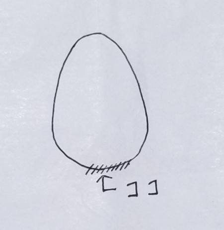f:id:susi202:20210224180005j:plain