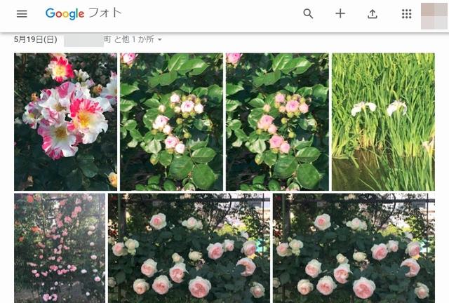 f:id:susumu1mm:20190623173216j:plain