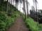 雨上がりの登山道は粘土みたいです(>_<)