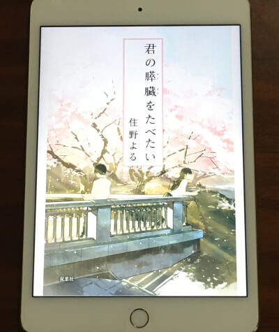 f:id:suyamatakuji:20170106164816j:plain