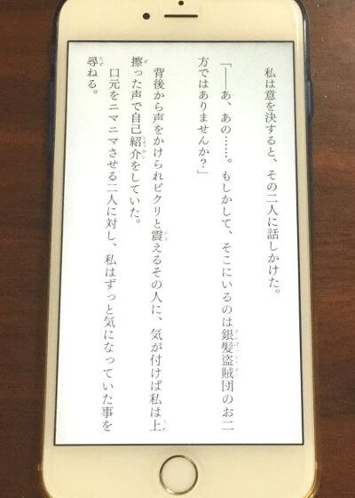 f:id:suyamatakuji:20170112114003j:plain
