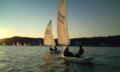[ヨット][yacht][プレプレ]ハーバーバック