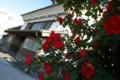 旧信陽銀行と薔薇