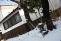 雪積もる庭