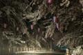 [須坂の桜]臥竜公園 雪積もる桜