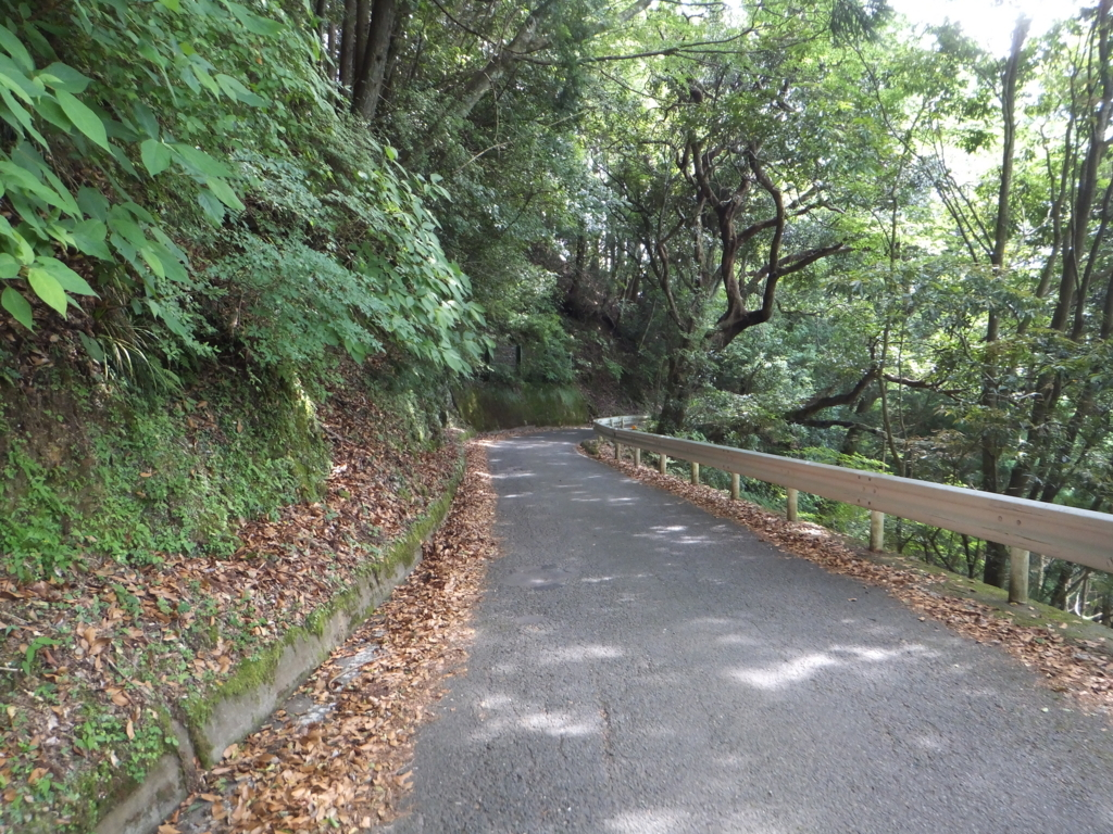 f:id:suzaku-umenoya:20170714012959j:plain