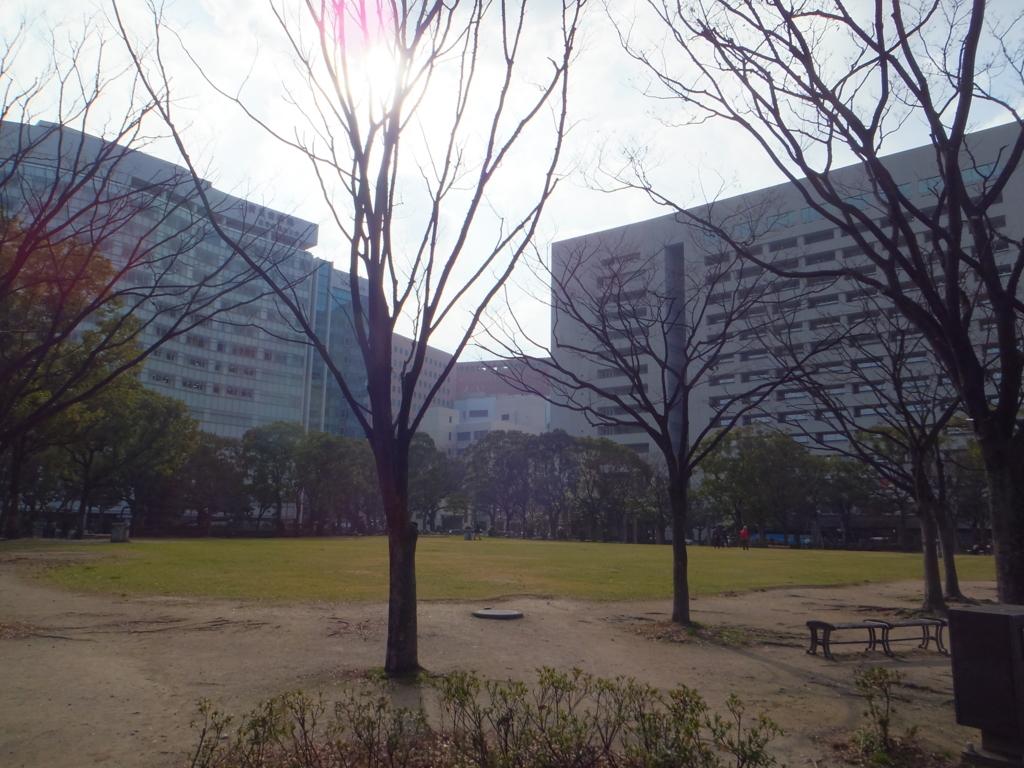 f:id:suzaku-umenoya:20180122224220j:plain