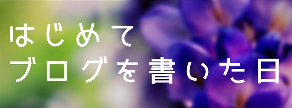 f:id:suzu-amayadori:20200503090435j:image